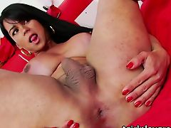 Busty shemale Milena caresses sexy body