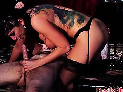 Tattooed rough sex babe doggystyled after bj