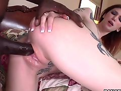 Indigo Augustine - Monsters Of Cock
